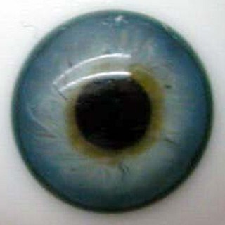 24mm Mouth Blown Glass Eyes -  Blue Green