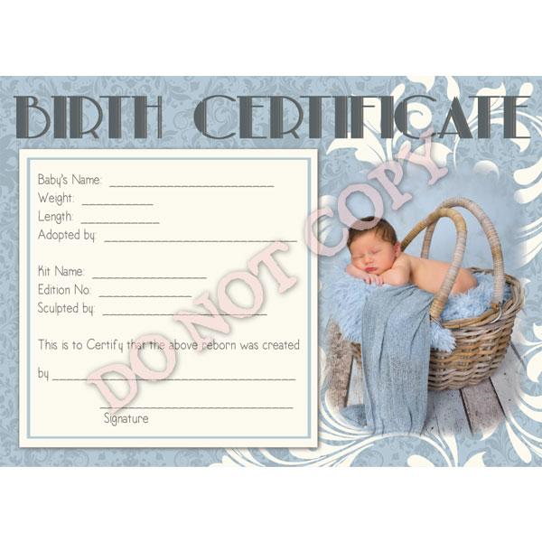 Reborn Doll Birth Certificate ~ Boy ~ Blue Damask with Newborn